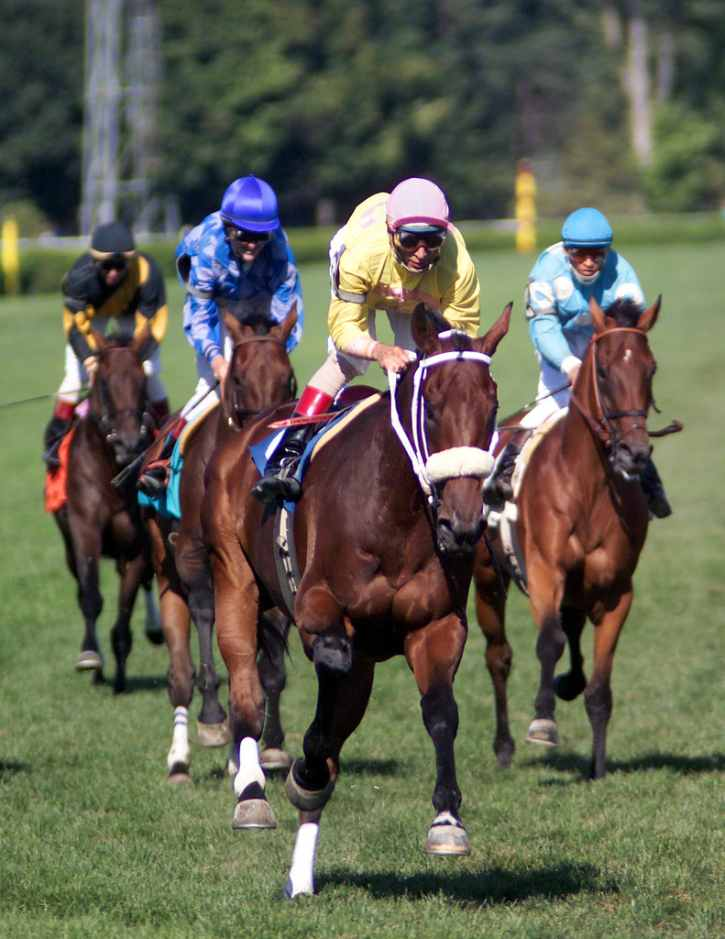 horses racing on the turf track