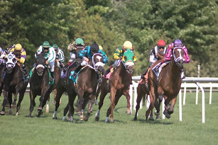 horses racing on the turf at saratoga