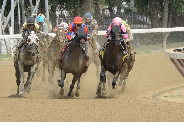 race horses rounding a bend on the track