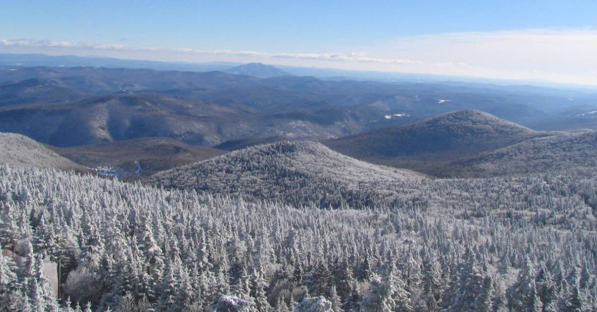 wide view of snow covered mountains and trees