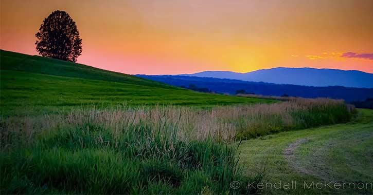 McKernon landscape shot