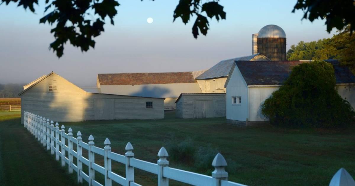 farm and fence