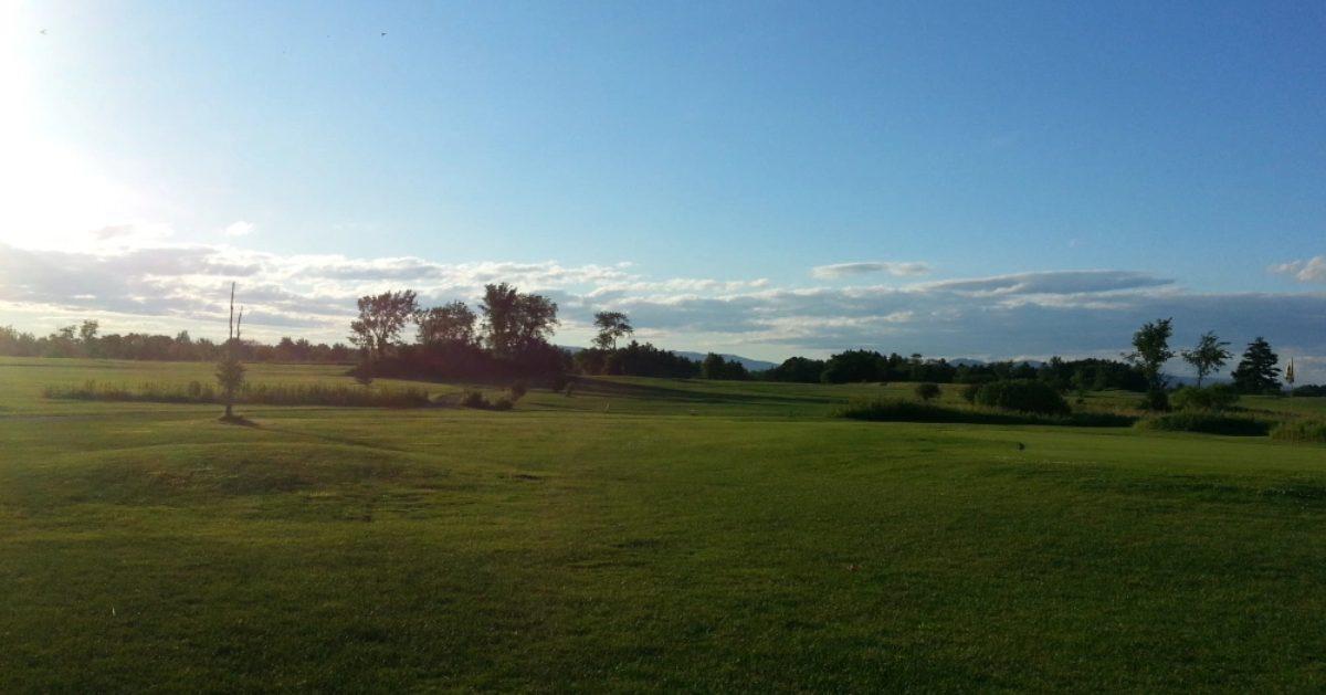 grassy golf course