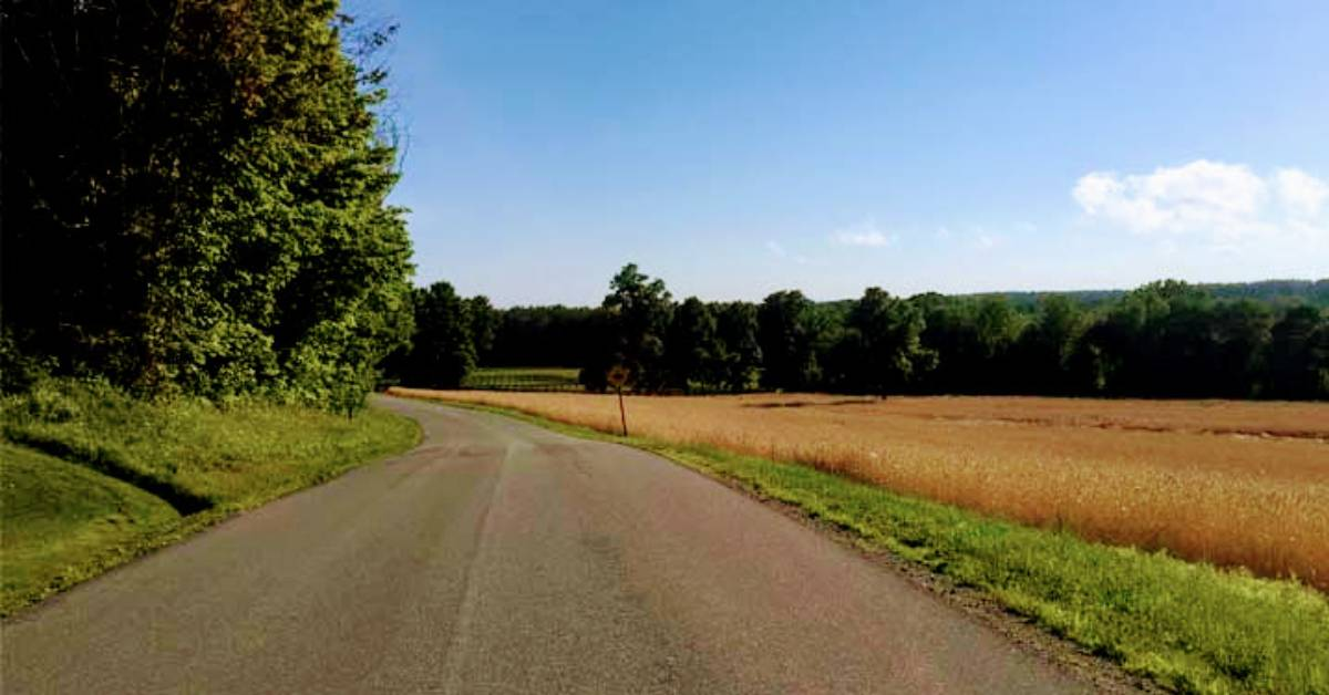 road through the countryside