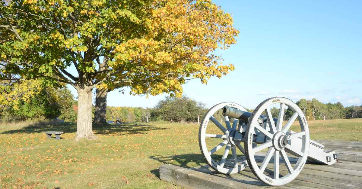 cannon near grassy field