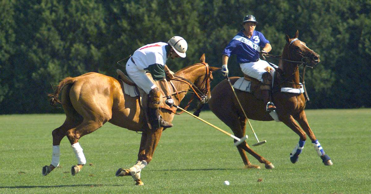 two riders circle the ball on a polo field