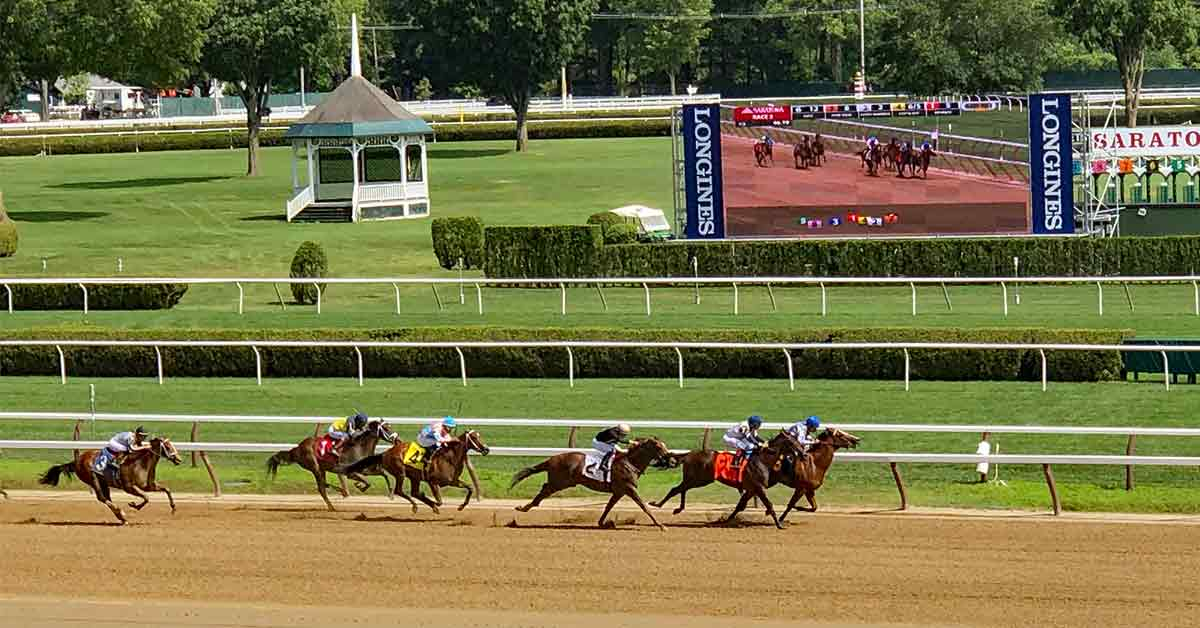view of thoroughbred horse race