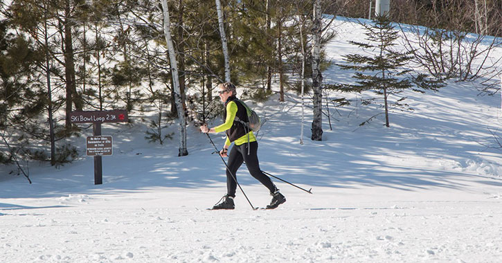 a cross country skier on a trail