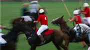 saratoga polo players at the saratoga polo field