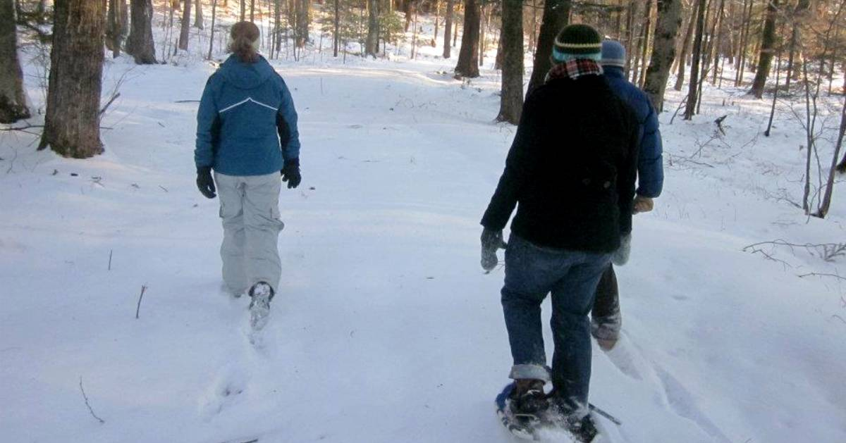 three people on a snowshoe hike