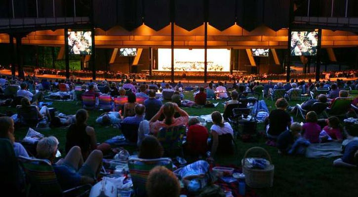 crowd on the lawn at SPAC during a nighttime event