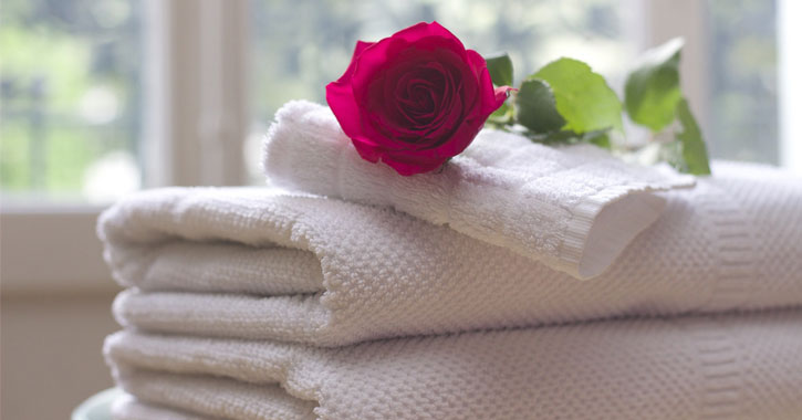 a red rose on top of a stack of white towels