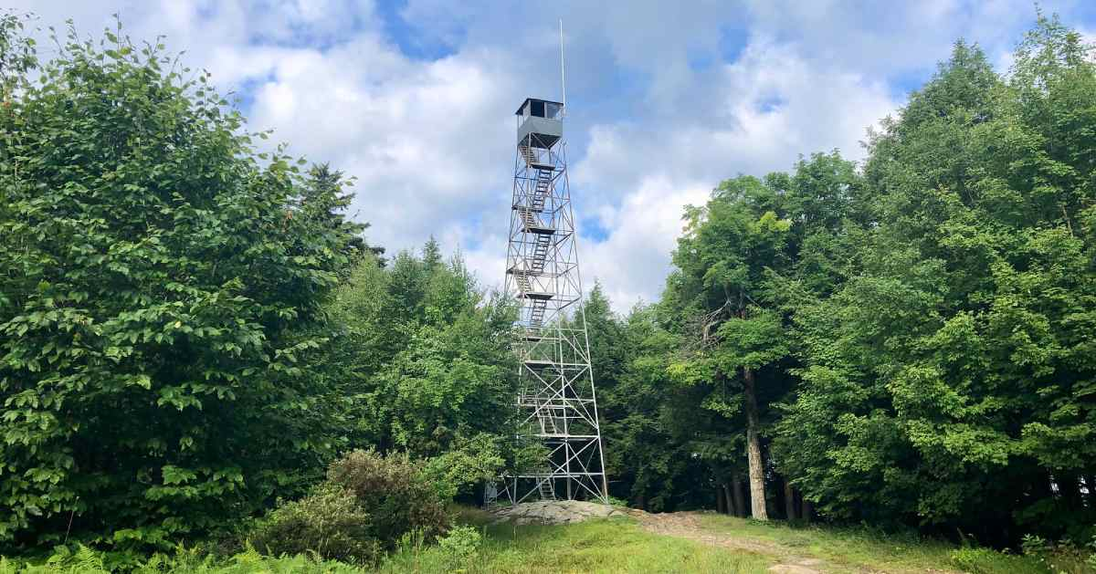 a fire tower near trees