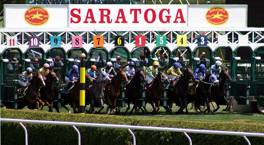 horses at the saratoga race course starting gate