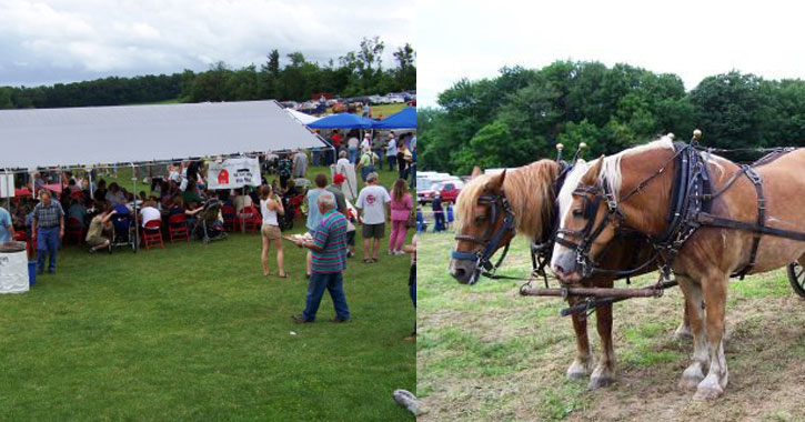 split image with crowds at the farm under a tent on the left and horses on the right