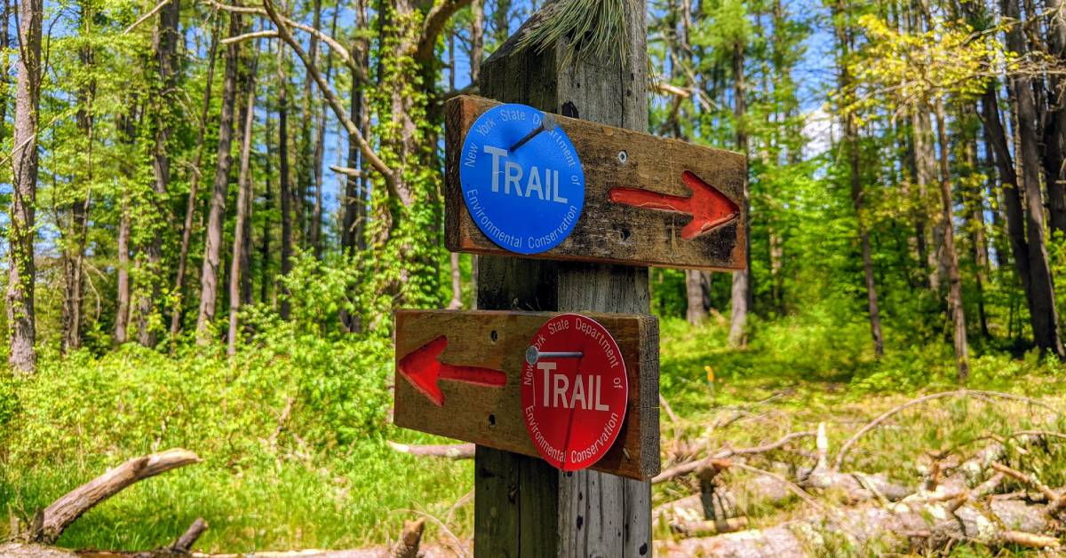 trail markers on post