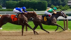 Travers Stakes in Saratoga Springs, NY