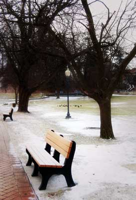 a bench in a park, light snow on the ground