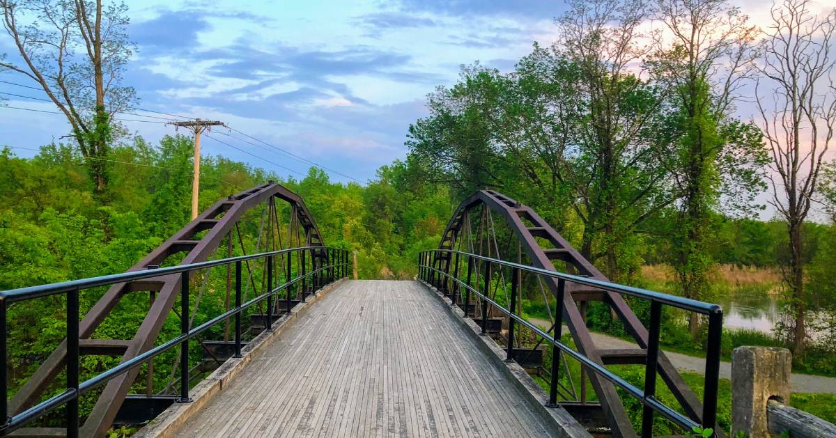 bridge in nature preserve