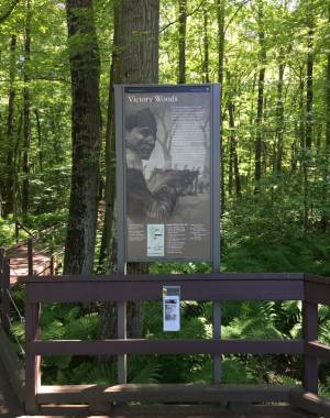 historic sign in woods