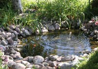 backyard pond fountain