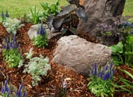 rock mulch flowers