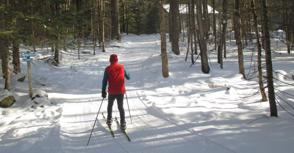 a person wearing blue shirt and red vest cross country skiing on open trail
