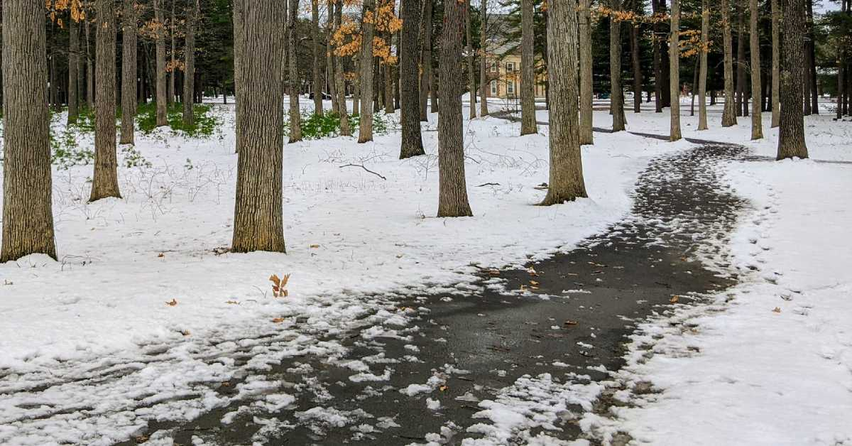 a paved trail with snow on nearby ground