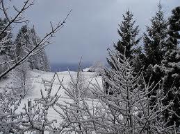 Winter in Saratoga Springs