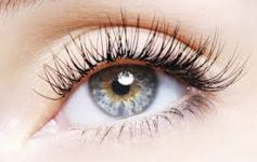 eyelashextension-thumb-275x183-19578.jpg