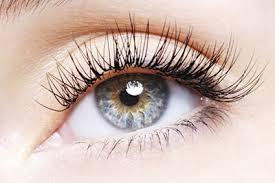 eyelashextension-thumb-275x183-19578.jpg