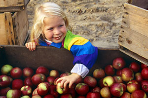 girl in bucket of apples