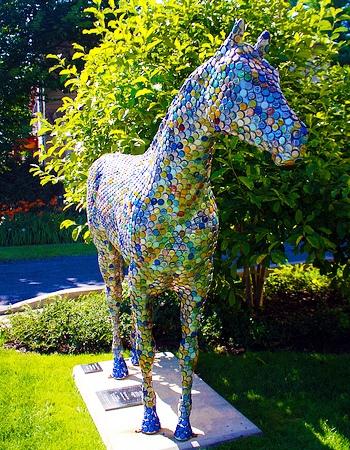 Horse 10-A.jpg