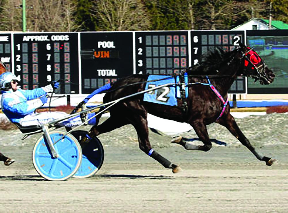 Saratoga Raceway Commences 76th Season Of Harness Racing At