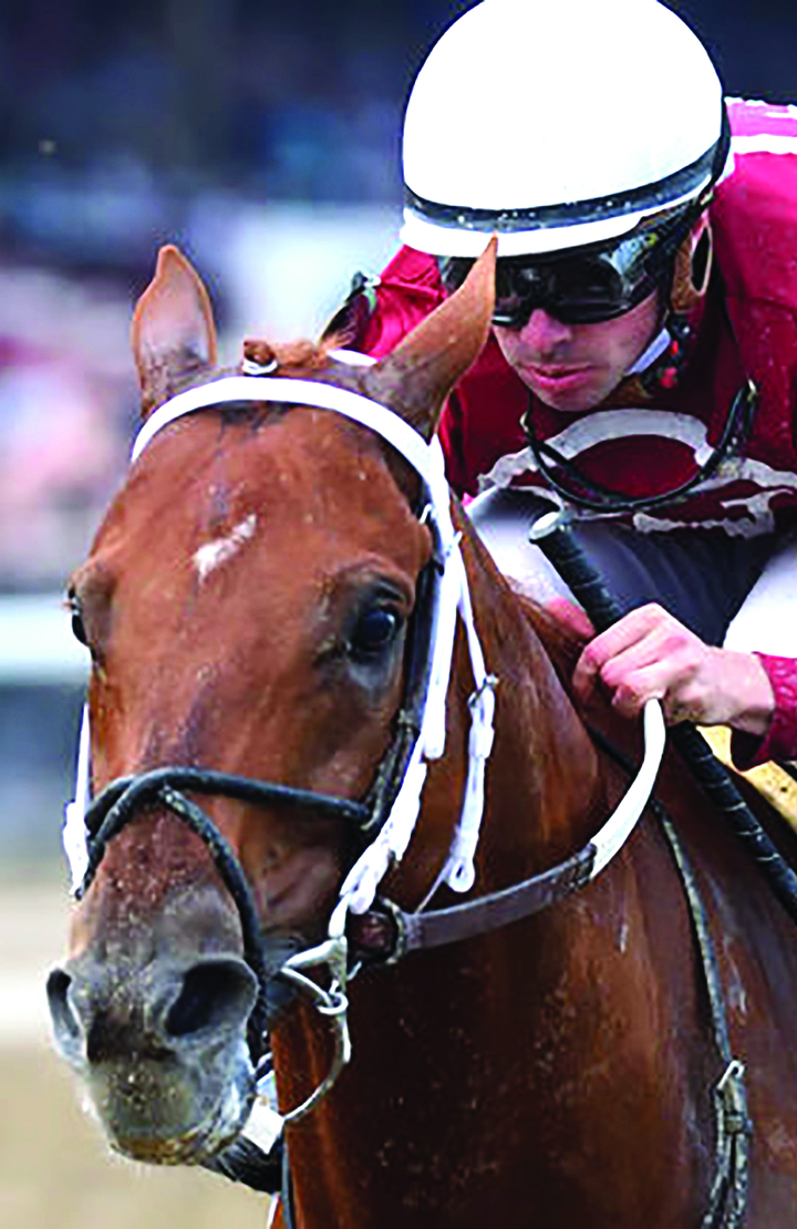 Horses Jockeys That Participate In Saratoga Horse Racing