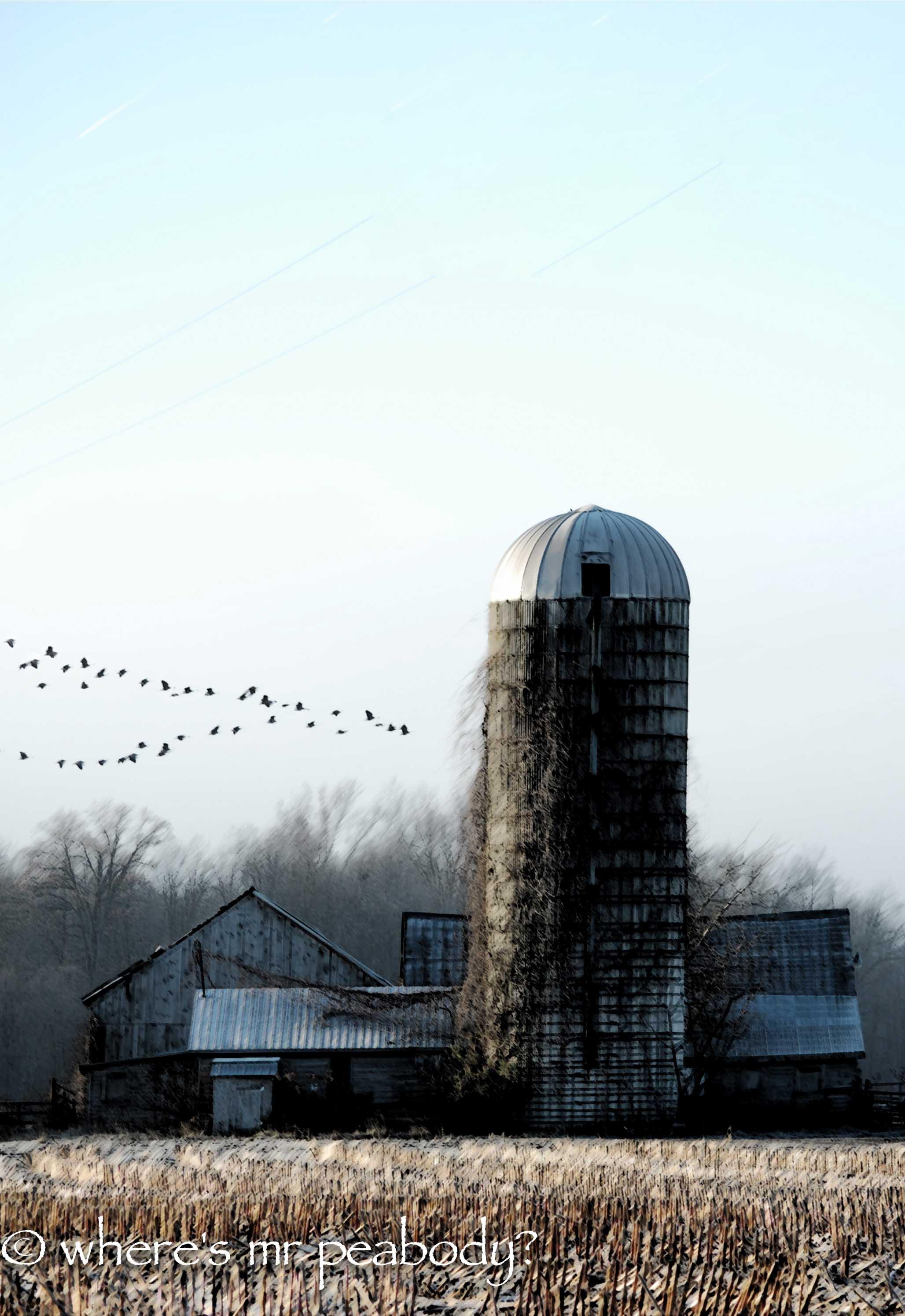 wrr barn (3).jpg