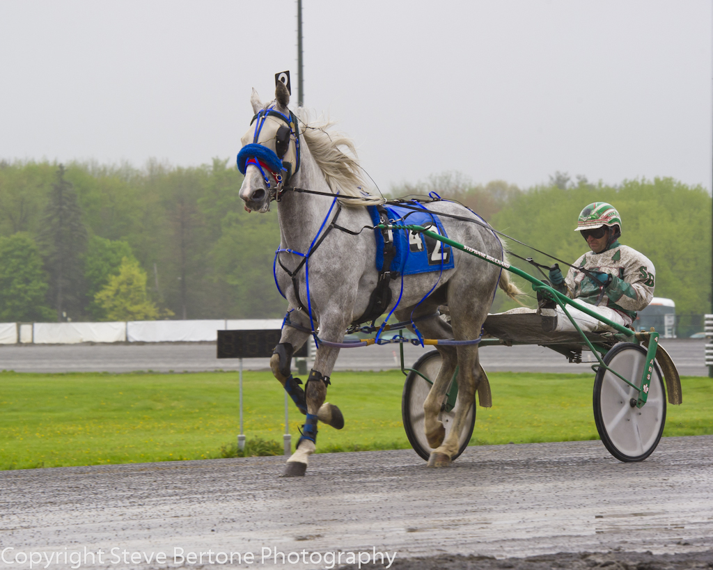 rainy-day-at-the-harness-track-2.jpg