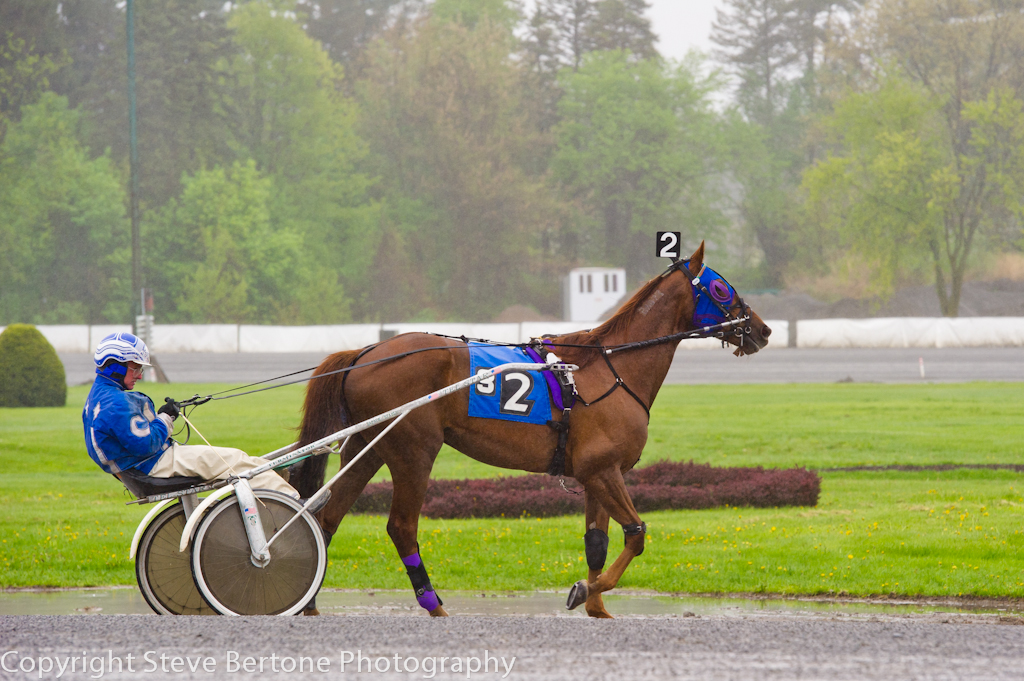 rainy-day-at-the-harness-track- (1).jpg