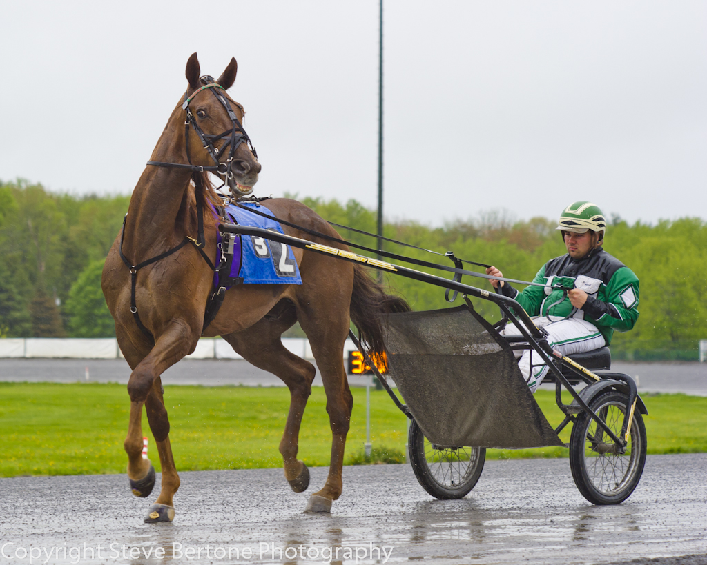 rainy-day-at-the-harness-track.jpg