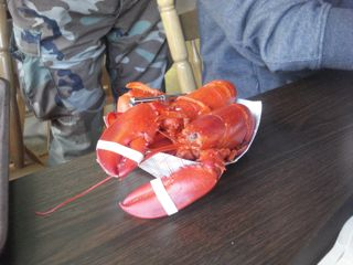 lobster lunch.jpg