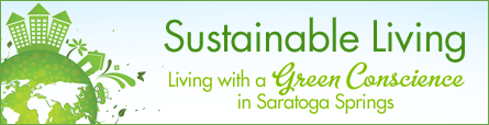 Sustainable Living In Saratoga: Green Blog By Karen Totino: Local Green Expert