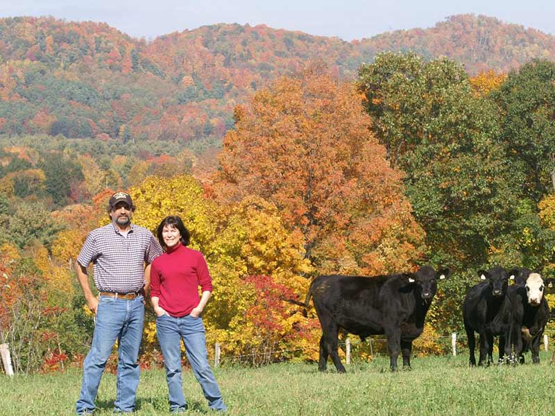 Mack Brook Farm owners alongside a few of their cattle with a fall foliage backdrop