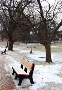 Congress Park in Saratoga Springs during the winter