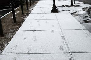 Footprints in the snow in Saratoga Springs