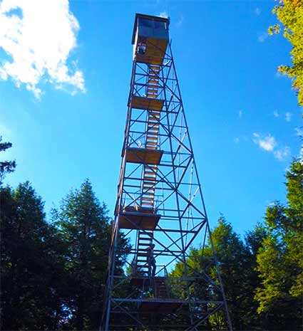 fire-tower-spruce.jpg