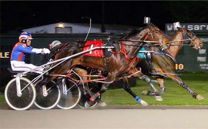 harness-racing.jpg