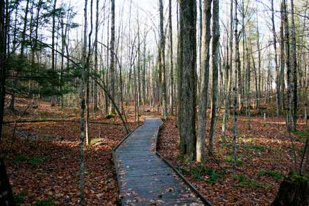 nature-trail.jpg