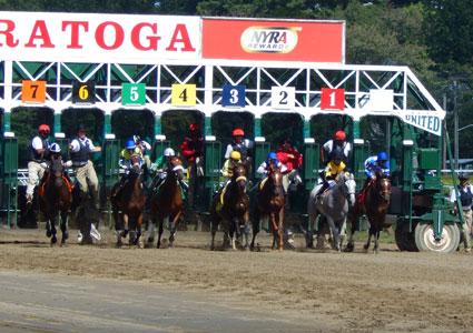 race-course-horses-starting-gate.jpg