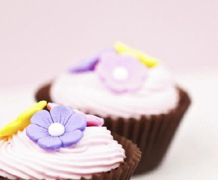 cupcakes-thumb-430x644-5479.jpg