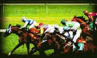 racing-thumb-200x119-5067.jpg